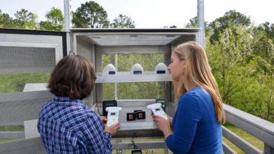 NC Asthma Cases Prompt Push for Hyperlocal Air Monitoring
